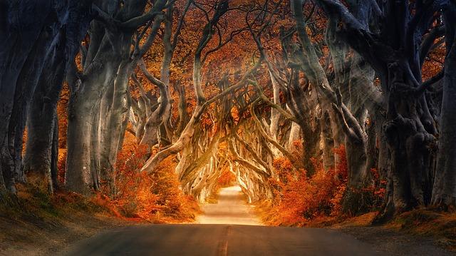 Осень. Древний уголок